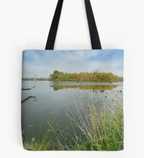 Canberra suspended in time Tote Bag
