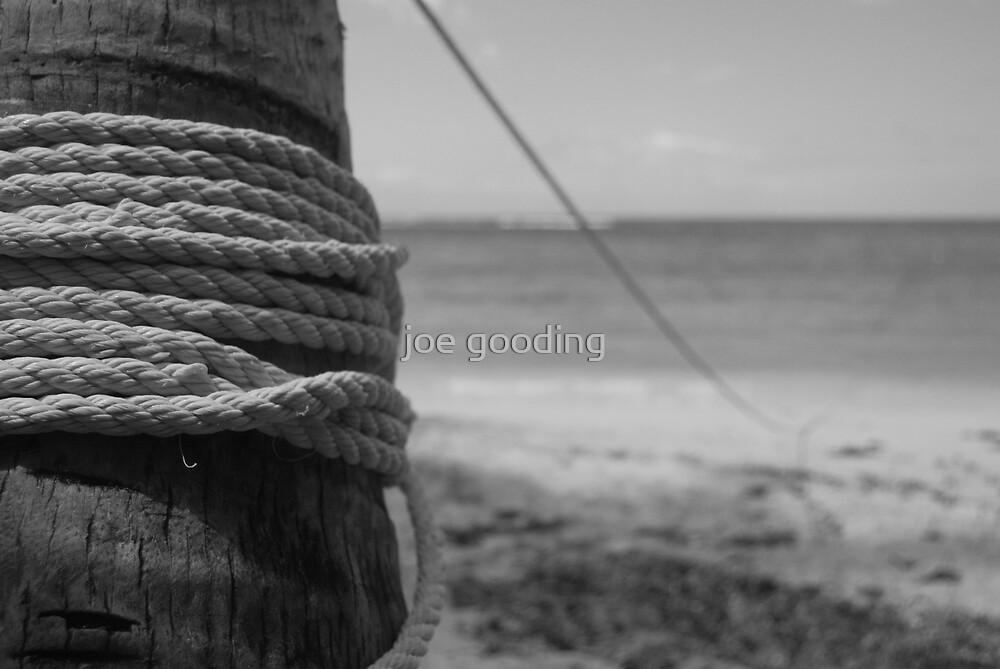 tied down to no man by joe gooding