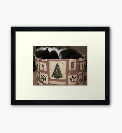 MERRY CHRISTMAS FROM THE CAT IN THE HAT (BOX) Framed Print