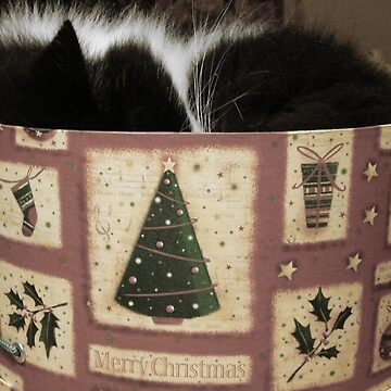 MERRY CHRISTMAS FROM THE CAT IN THE HAT (BOX) by MayLattanzio