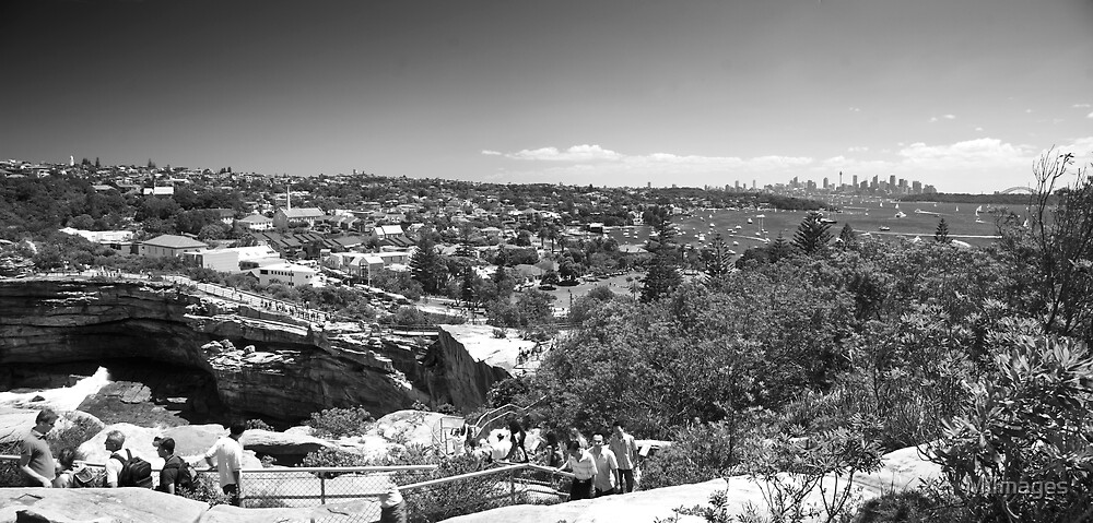 View of Sydney Skyline From The Gap Watson Bay B&W by MiImages