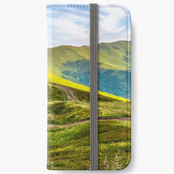 swamp on hill side in mountains iPhone Wallet