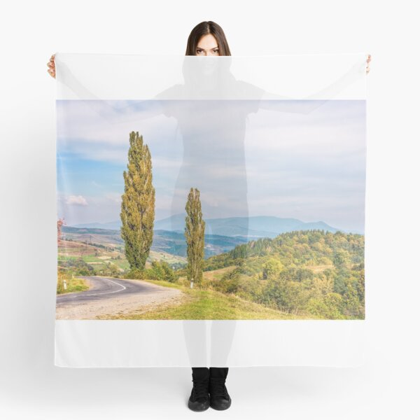 trees on a hill side near the mountain road Scarf