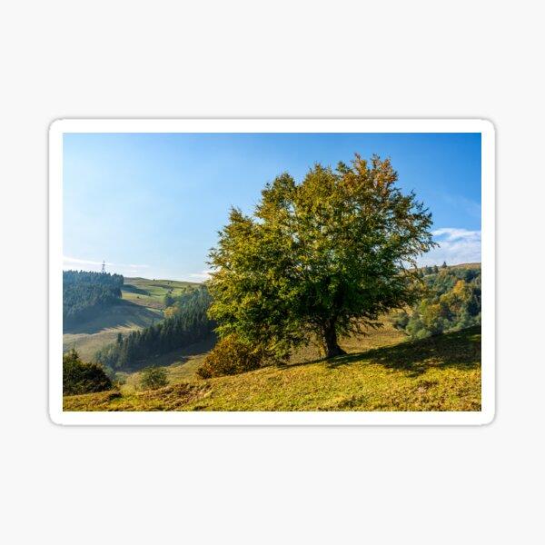 tree near valley in mountains Sticker