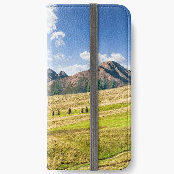 Rural fields near the high mountains iPhone Wallet