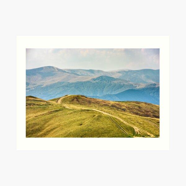 road through a meadow on hillside Art Print