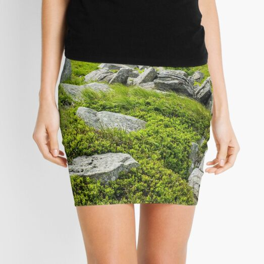 stones and boulders in Carpathian mountain range Mini Skirt
