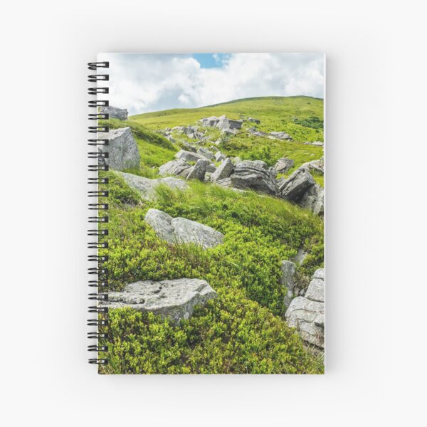 stones and boulders in Carpathian mountain range Spiral Notebook