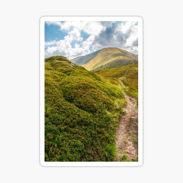 narrow path down the mountain Sticker
