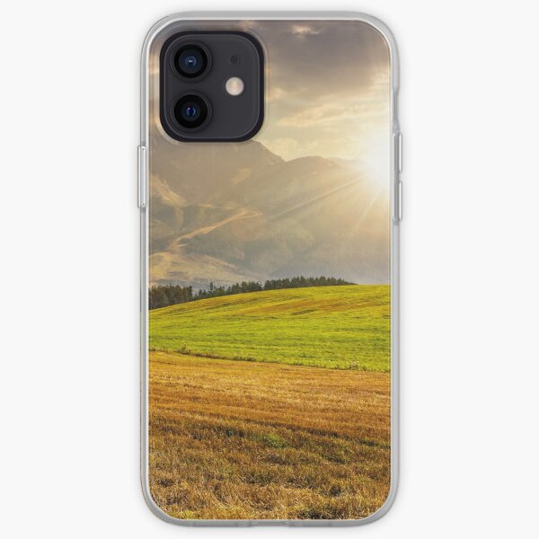 rural field in Tatra mountains  at sunset iPhone Soft Case