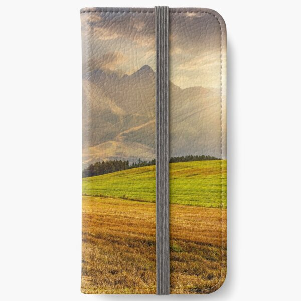 rural field in Tatra mountains  at sunset iPhone Wallet