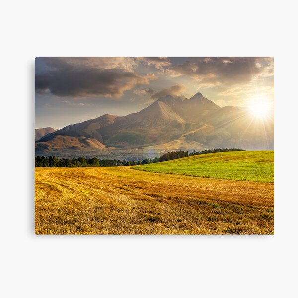 rural field in Tatra mountains  at sunset Canvas Print