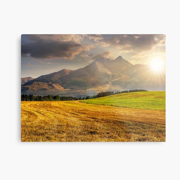 rural field in Tatra mountains  at sunset Metal Print