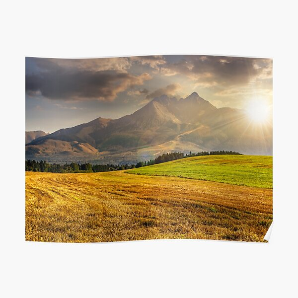 rural field in Tatra mountains  at sunset Poster