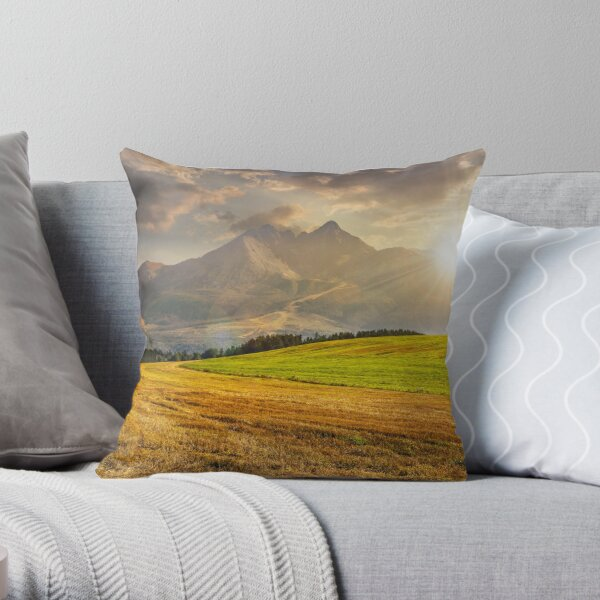 rural field in Tatra mountains  at sunset Throw Pillow