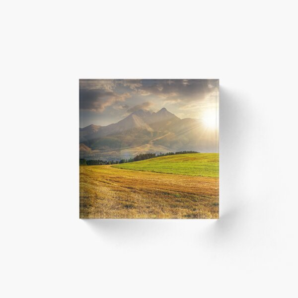 rural field in Tatra mountains  at sunset Acrylic Block
