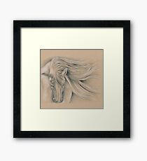 Andalusian Stallion Pencil Drawing Framed Print