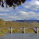 Dunkeld Bridge by Tom Gomez