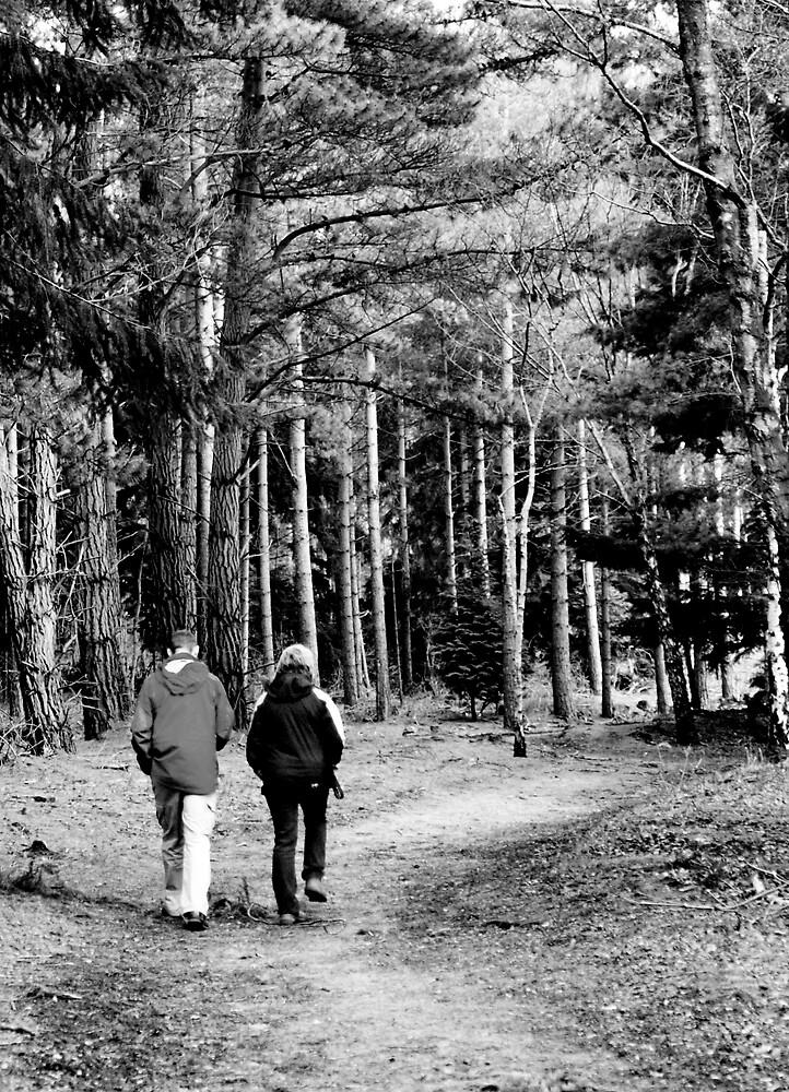Walkers by kimberleyB