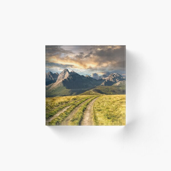 Path through the meadow to Tatra mountains Acrylic Block