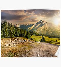 road through forest to high mountains at sunset Poster