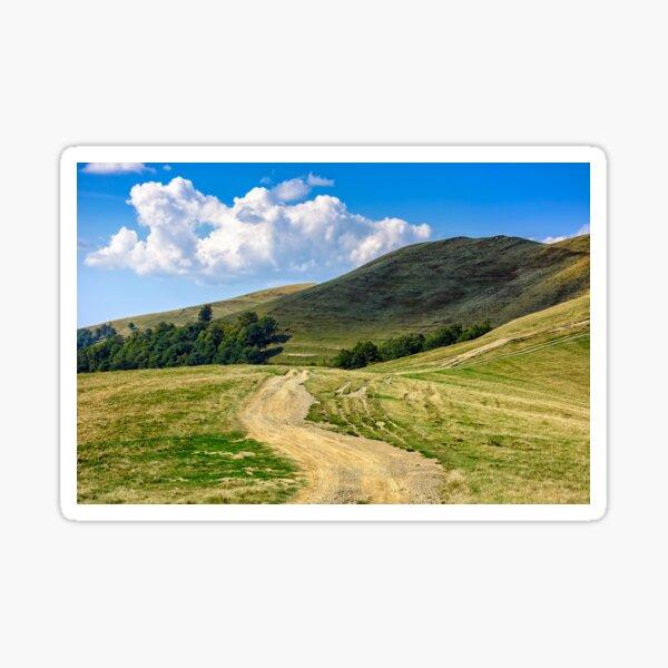 path through hill side meadow in Carpathians Sticker