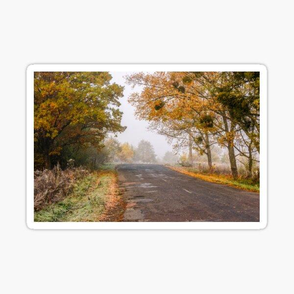 road through foggy forest in autumn Sticker
