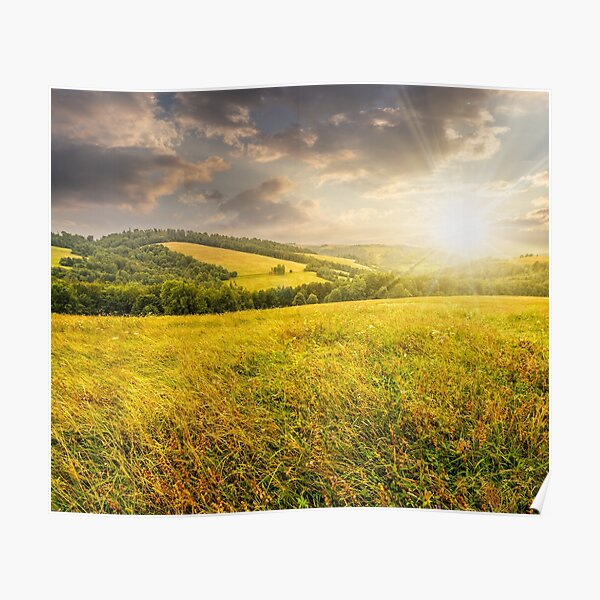 rural field near forest at hillside at sunset Poster