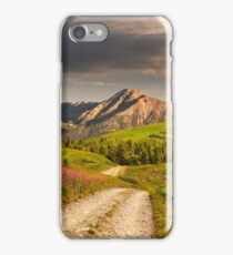 wild flowers by the road on hillside at sunset iPhone Case/Skin