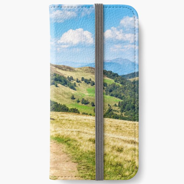 road through a meadow on hillside iPhone Wallet