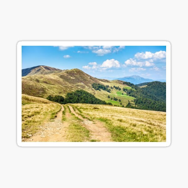 road through a meadow on hillside Sticker