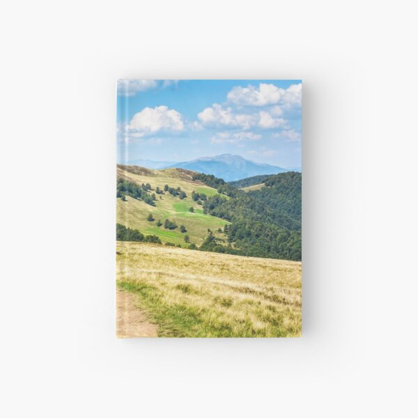 road through a meadow on hillside Hardcover Journal