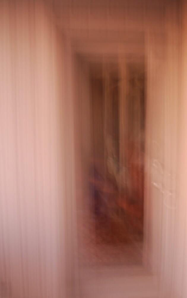 Ghost Door by Robert Baker