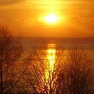 orange sunrise by brucemlong
