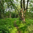 Green Acres by marts1