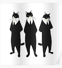 Tuxedo cats Poster