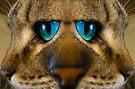 Kitty NOSE Best by Elizabeth Burton