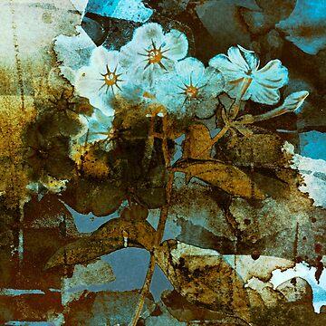 Fleurs en hiver/wintery floral by clemfloral