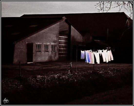 Dutch Incongruities at Dusk by Wayne King