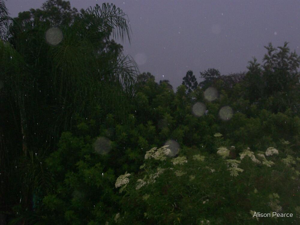 Raindrops by Alison Pearce