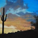Sonoran Shadows by James Lindsay
