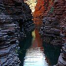 Joffre Gorge, Karijini by Richard  Stanley