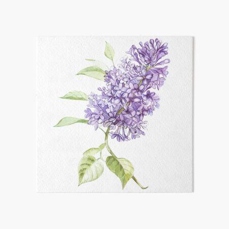 Lilac Art Board Print