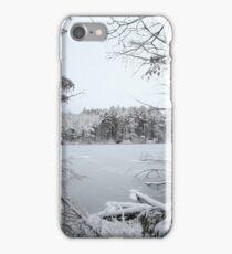 Window into Winter Wonderland iPhone Case/Skin