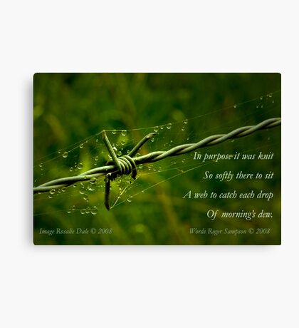 Collaboration ~ Beauty and the Barbed Wire Canvas Print
