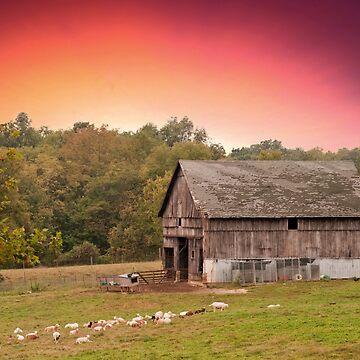 Best little goat Farm by branhamphoto