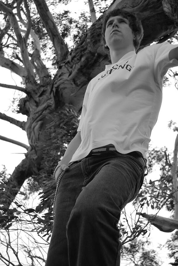 Taylor In A Tree? by Patrick Kelly