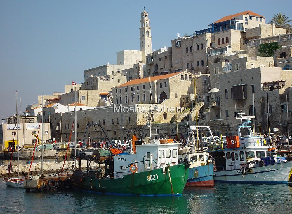 Jaffa fishing port by Moshe Cohen