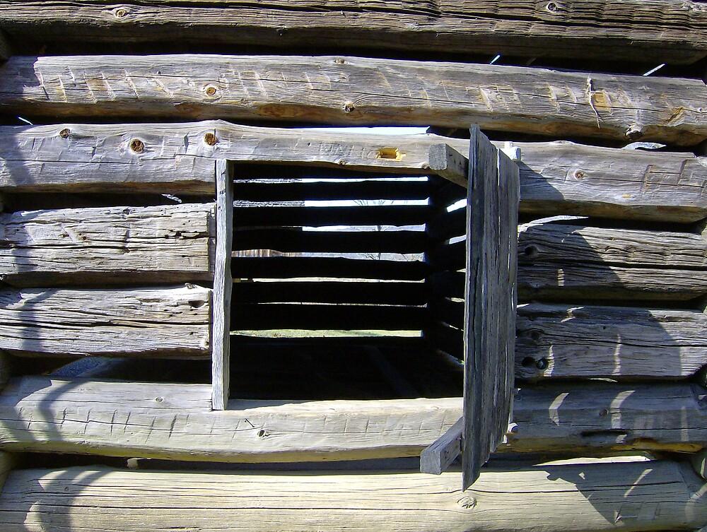 Window by tfisher9553