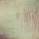 Reeds23 by Tom  Reynen
